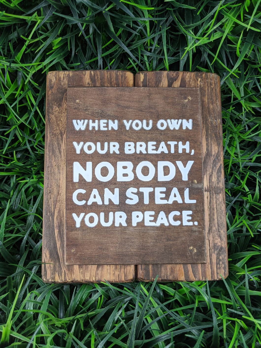 Nobody Can Steal Your Peace
