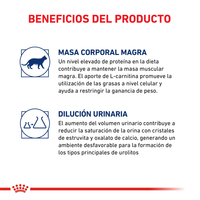 Alimento Royal Canin Gatos Castrados Young Female