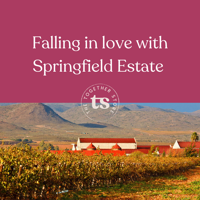 Falling in Love with Springfield Estate