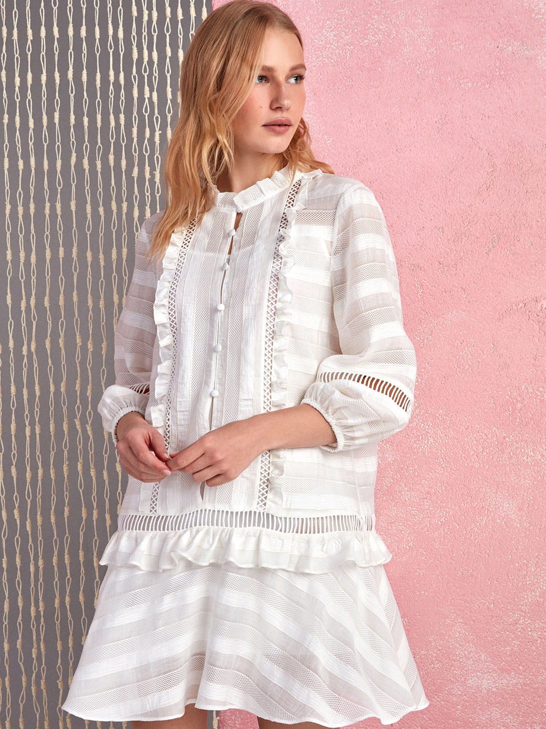 Ruffled Embroidered Mini Dress