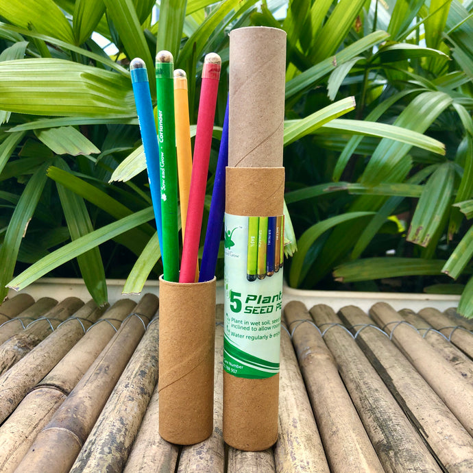 Sow and Grow 5 Plantable Seed Pencils in a Re-usable Pencil Box | For Writing, Drawing, Sketching