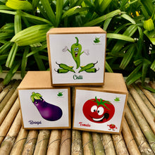 Load image into Gallery viewer, DIY Gardening 3 Vegetable Kits | Tomato + Brinjal + Chilli