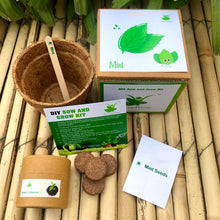 Load image into Gallery viewer, Sow and Grow DIY Gardening Kit of Mint (Grow it Yourself Herb Kit)