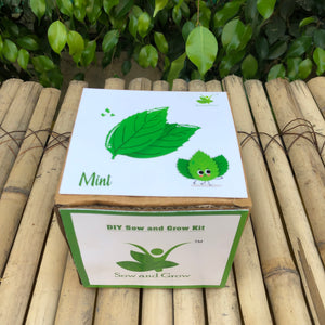 Sow and Grow DIY Gardening Kit of Mint (Grow it Yourself Herb Kit)