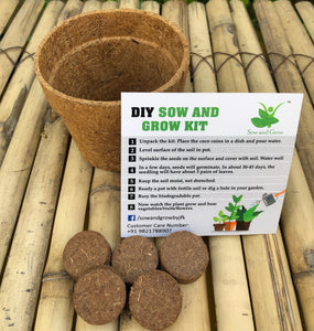 Sow and Grow DIY Gardening Kit of Marigold (Grow it Yourself Flower Kit)
