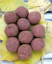 Load image into Gallery viewer, 10 Plantable Seed Balls with Brinjal Seeds | Beej Balls