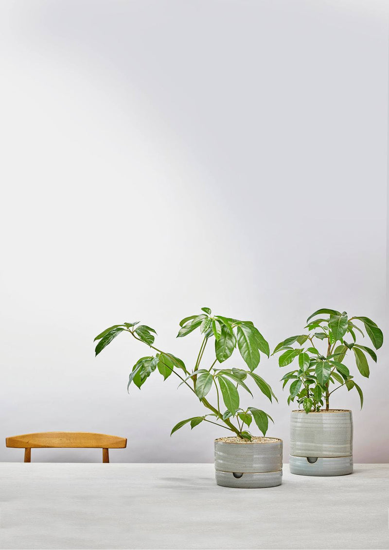 Self Watering Plant Pot Tall Grey Crackle