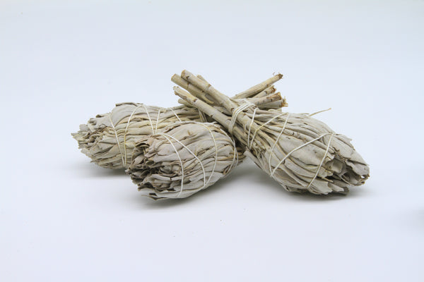 Incausa White Sage Smudge Stick Small