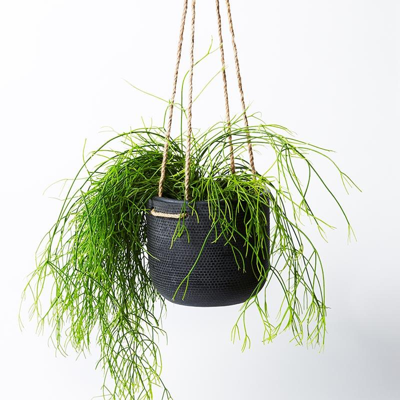 Jones & Co Tweed Hanging Planter Black