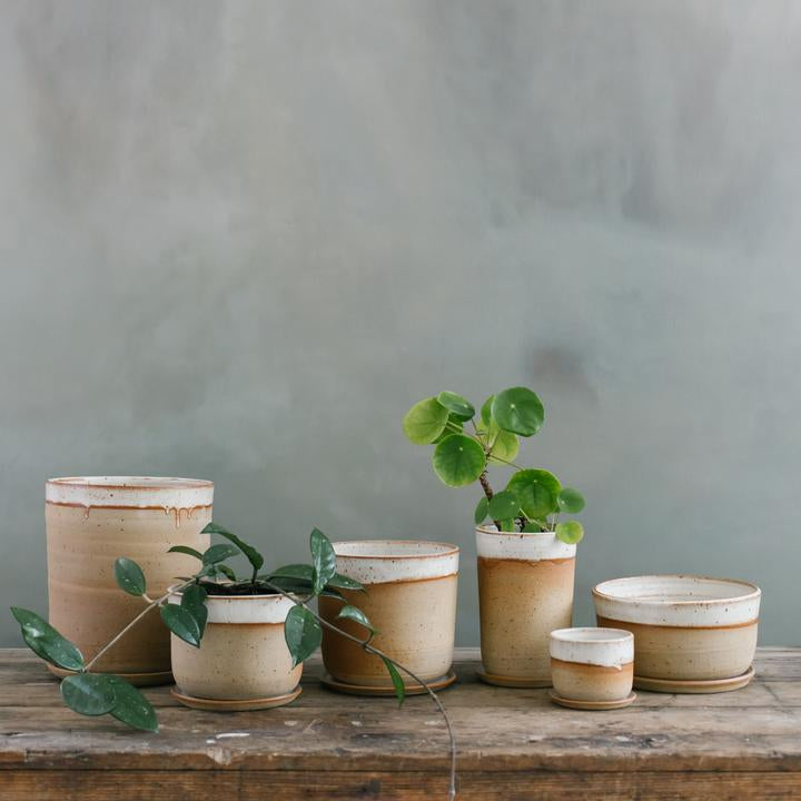 Leaf & Thread Medium Stoneware Planter + Saucer Desert