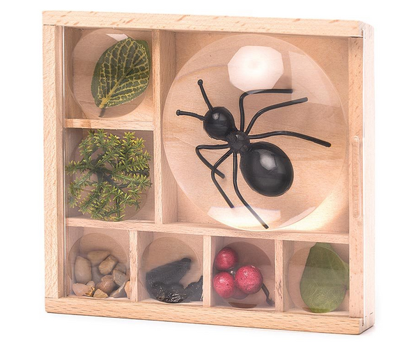 Kikkerland Great Outdoors Bug Box