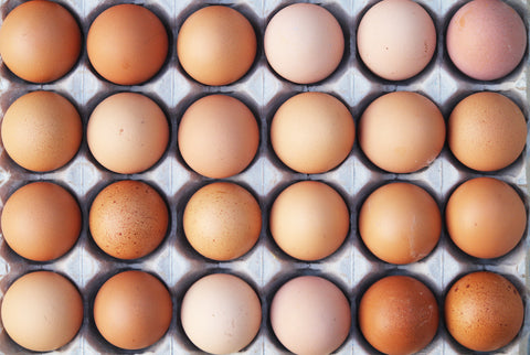 4 Benefits of Egg White Protein