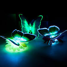 Optical Fibre Butterfly