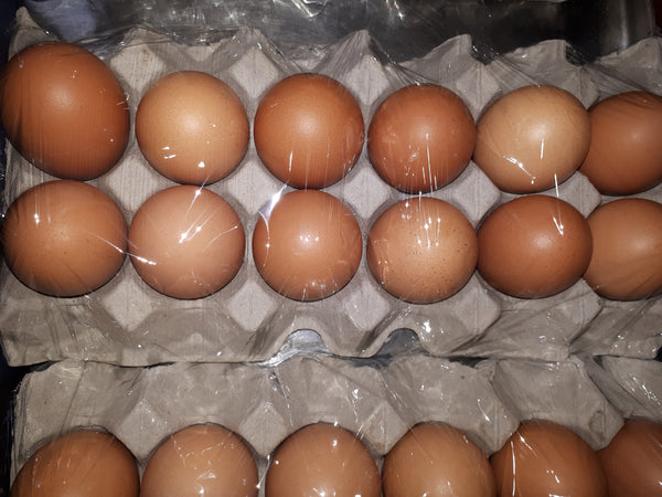 Free Range Eggs (size 800gm)