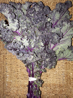 Kale Purple