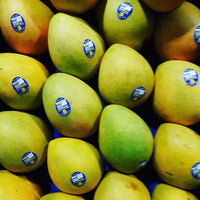 MANGOES kps LARGE