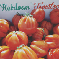 Tomatoes Heirloom 500g punnets