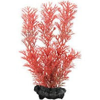 TETRA DECOART FOXTAIL RED S