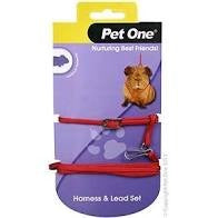 PET ONE GUINEA PIG HARNESS & LEAD SET RED