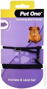 GUINEA PIG HARNESS & LEAD SET BLACK