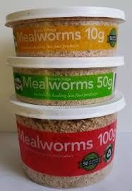 MEALWORMS - 50G TUB PISCES