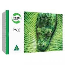 FROZEN RAT - ADULT MED 2PK