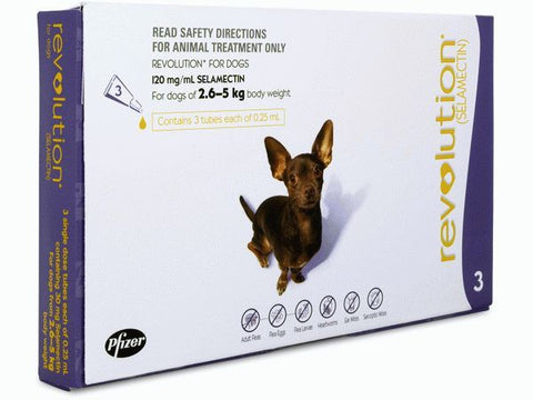 REVOLUTION DOG 2.6-5KG PURPLE 3'S