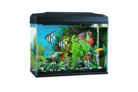 BLUE PLANET CLASSIC AQUARIUM 50L