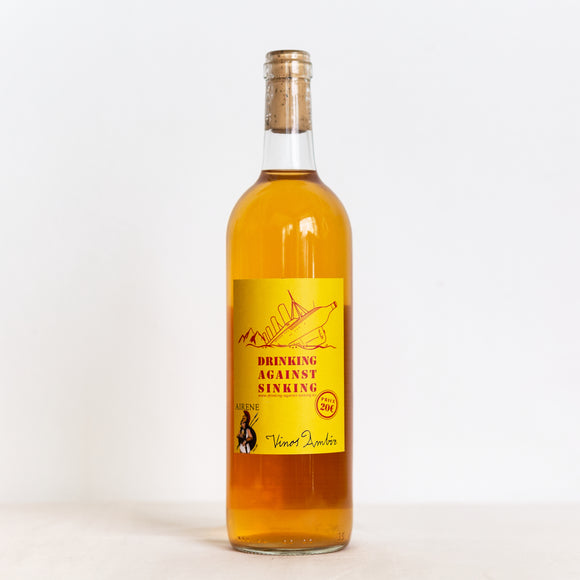 VINOS AMBIZ Airene 2019 / White / Orange Spain natural wine bottle shop wine bar  ladidadiwines