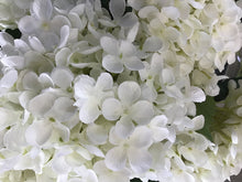 Load image into Gallery viewer, Hydrangea Stem assorted colours