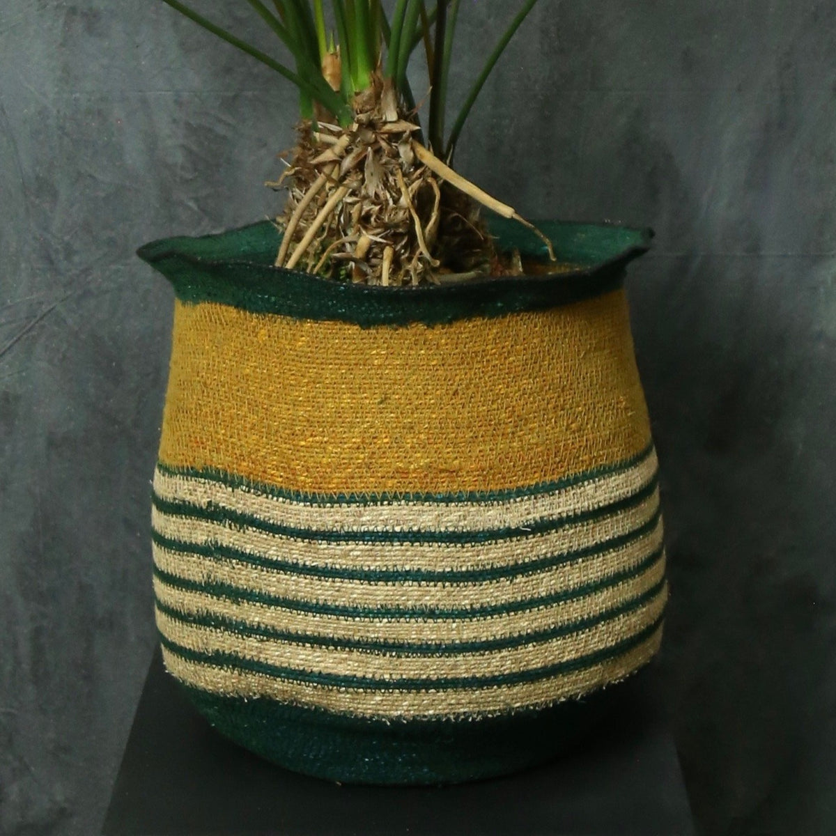 Flared seagrass basket