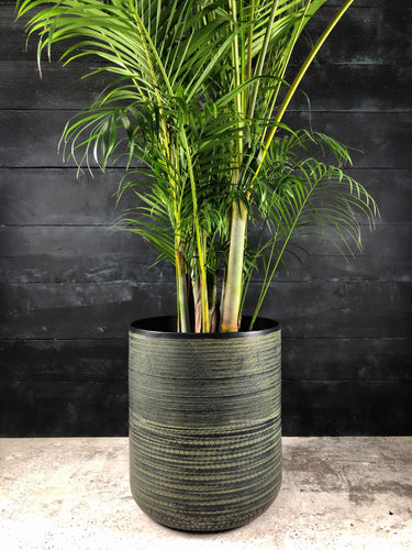 Kenya etched metal planter with palm