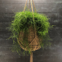 Load image into Gallery viewer, Hanging basket with liner