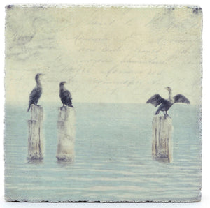 Lost & Found Art Block - Cormorants