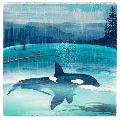 Lost & Found Art Block - Orcas Spray