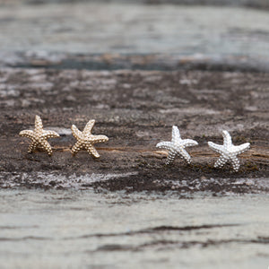 GLEE- Crested  Silver Stars Stud Earrings