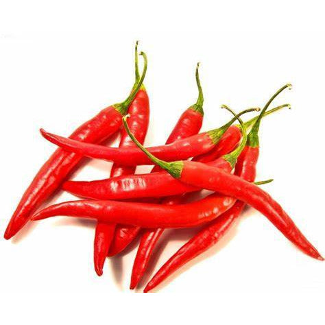 chilli-long-red-per-kg