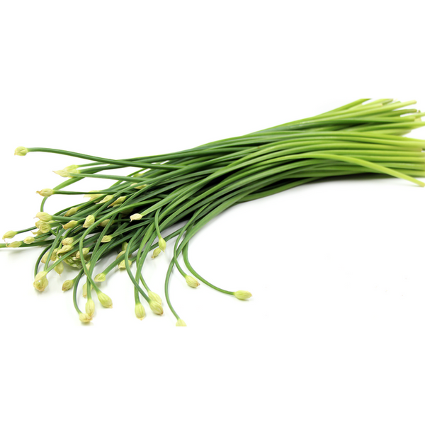 Garlic Chive Flower 韭菜花 - Per bunch