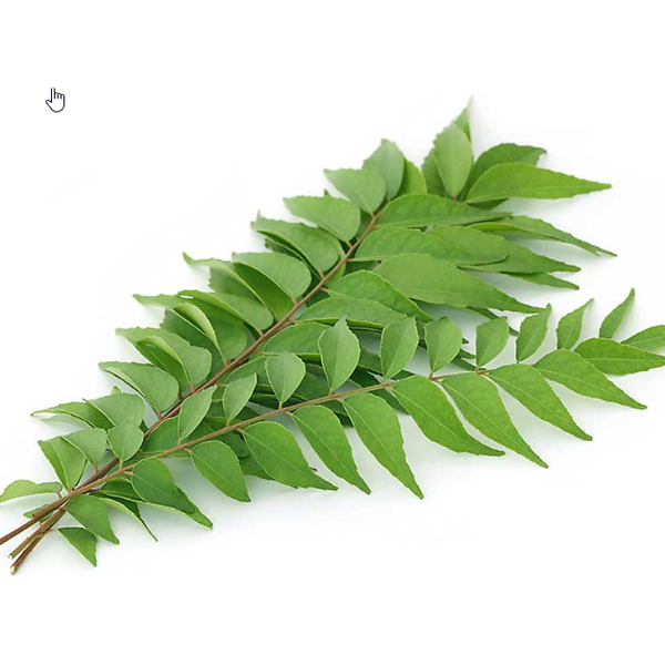 curry-leaves-fresh-100g
