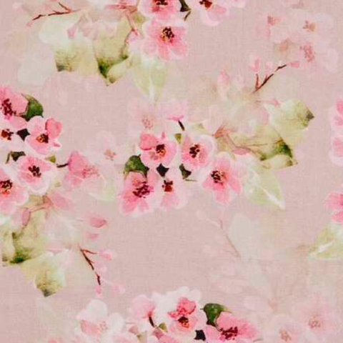 Deep pink cherry blossom on a light pink background