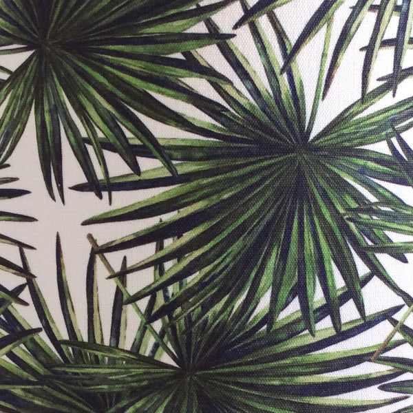Palm fronds in green with dark edging with a hint of brown on stalks and on a white background