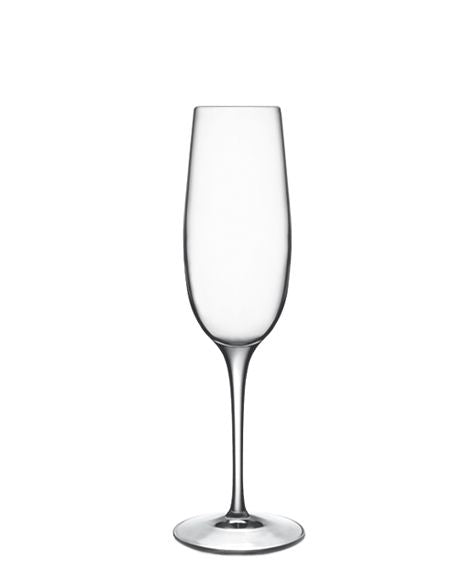 Palace Champagne Flute - Set of 6