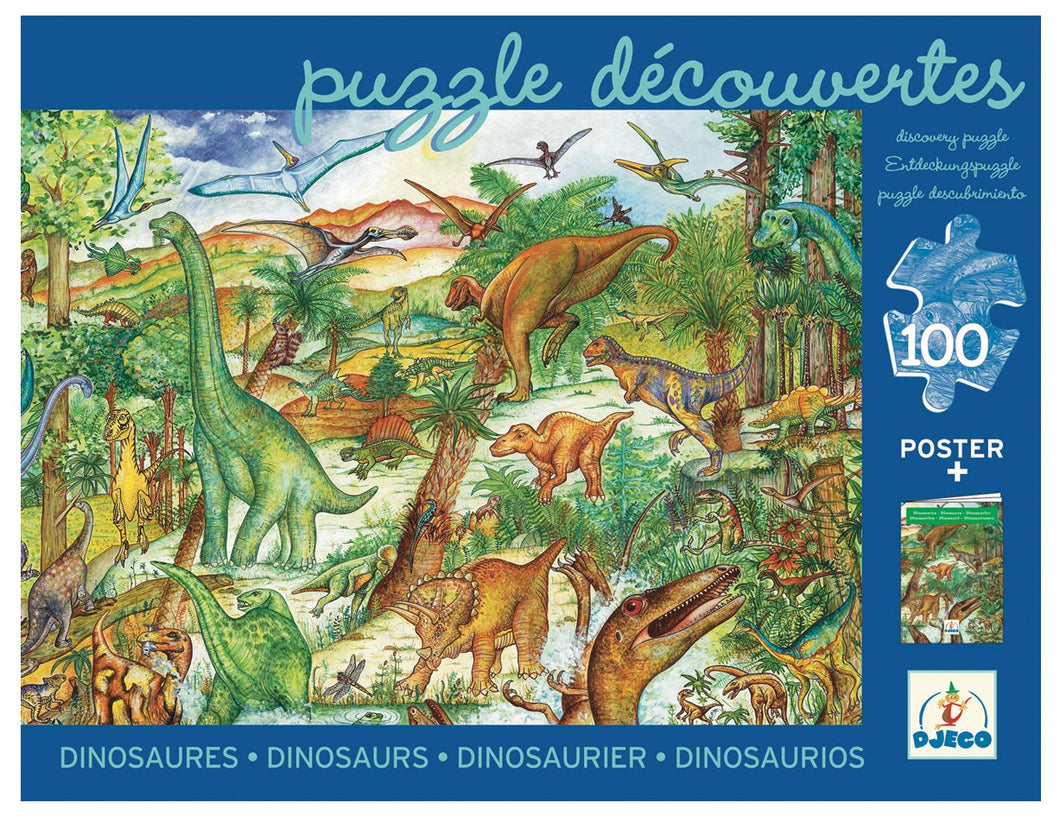 Observation Puzzle - Dinosaurs