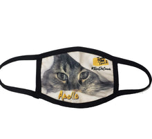 Load image into Gallery viewer, Cat Tour de Couch Cloth Face Mask