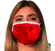Load image into Gallery viewer, Velvet Holiday Face Mask 2 Layer