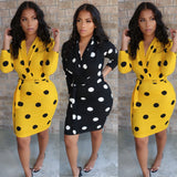 Lady Bug Polka Dress Black