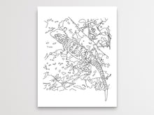 Load image into Gallery viewer, Oklahoma State Lizard. Collared Lizard Line Art Print