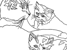 Load image into Gallery viewer, Pennsylvania State Shelter Cat. Cat and Kittens Line Art Print