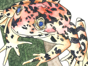 California State Frog. Red-Legged Frog Watercolor Art Print