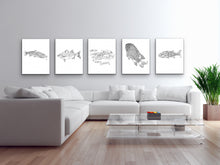 Load image into Gallery viewer, State Fish. Brook Trout Line Art Print